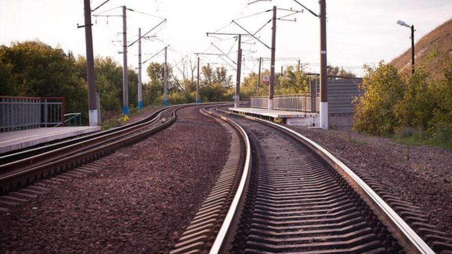 Пропавшего в марте воронежца опознали по анализу ДНК после гибели под поездом