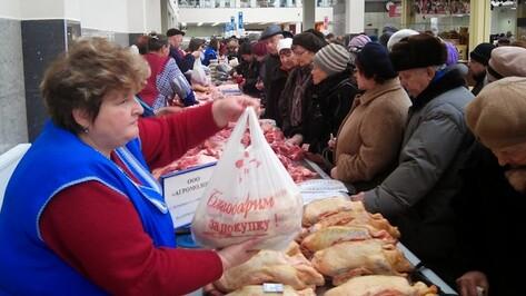 Острогожцы привезли на ярмарку в Воронеж мясо, яблоки и халву