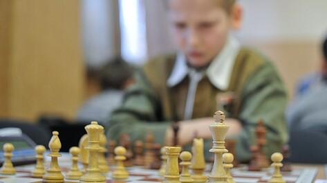 В Воронеже впервые пройдет областной Форум одаренных детей