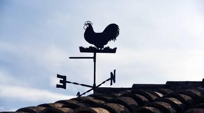 Штормовое предупреждение по ветру дали в Воронежской области