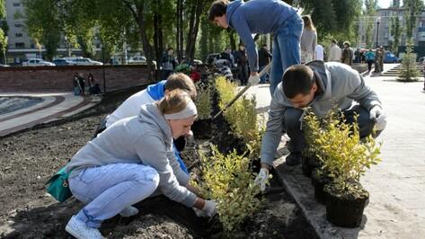 Олимпийские чемпионы посадят именные деревья в воронежском сквере