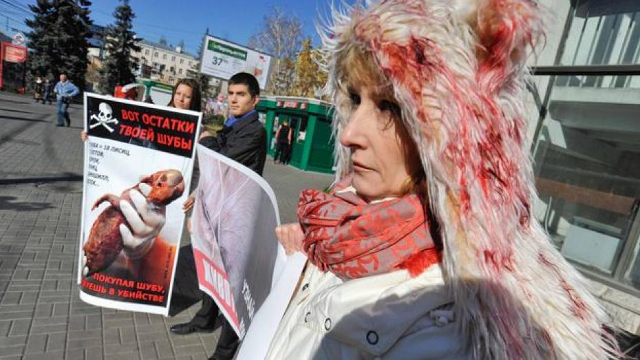Зоозащитники призвали воронежцев отказаться от меха и кожи