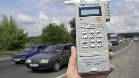 В выходные ГИБДД проведет сплошные проверки воронежских водителей