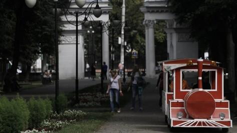 Воронежцам предложили оценить проекты развития парка «Орленок»