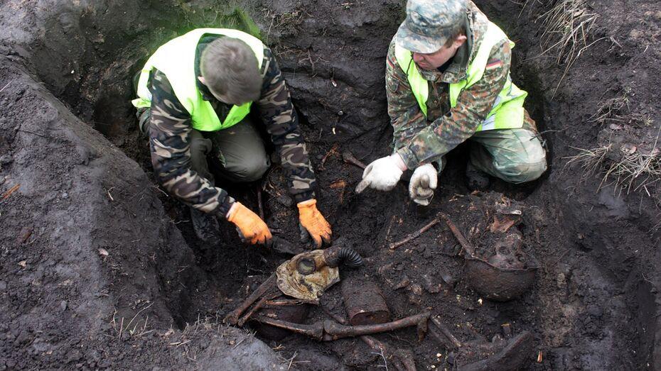 Воронежские поисковики нашли останки 12 красноармейцев в яблоневом саду