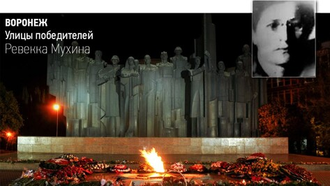 Журналист РИА «Воронеж» открыла сбор средств на информационные доски защитницам города