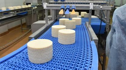 Благодаря политике губернатора в Воронежской области в 2,5 раза выросли инвестиции в производство пищевых продуктов