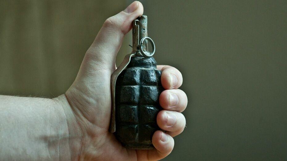 В Воронеже на чердаке жилого дома нашли пистолет и гранату