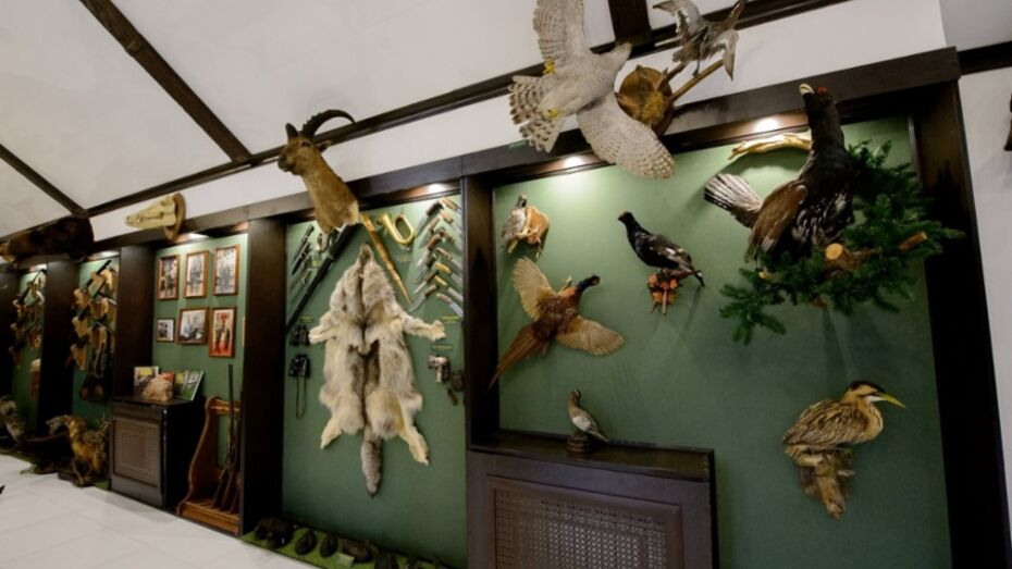 В Воронежской области открылся музей охоты