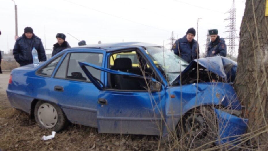 В Воронеже «Нексия» врезалась в дерево