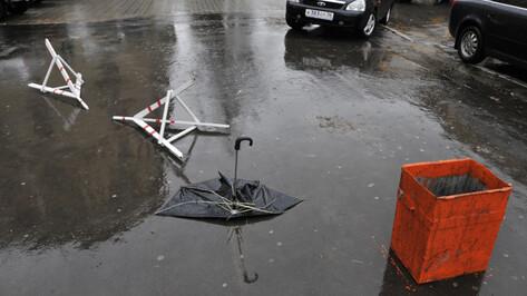 Спасатели предупредили воронежцев о сильных дождях и грозах 6 октября