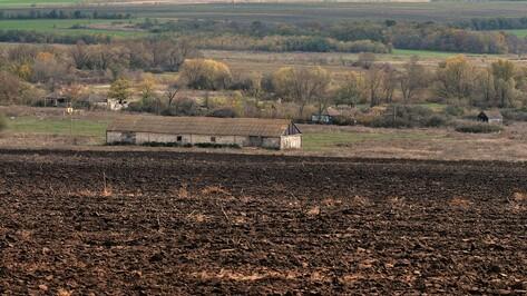 Заброшенные хутора: как пустеют воронежские деревни. Марьевка