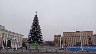 Главную елку Воронежа зажгли на 3 дня раньше