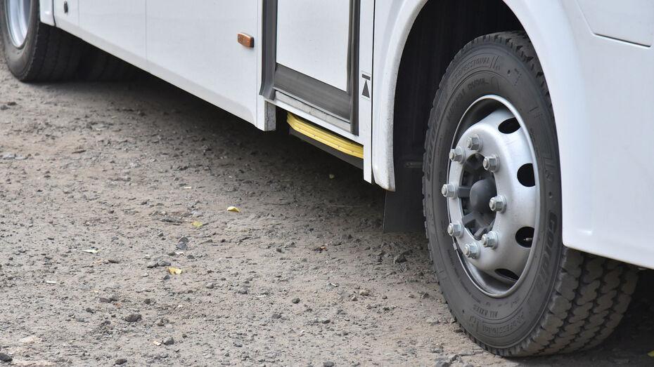 Воронежские автодилеры попались на сговоре при поставке автобусов в районы