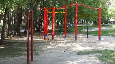 Вырубка деревьев ради ледового дворца в Воронеже обойдется инвестору в 800 тыс рублей
