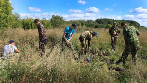 Поисковики нашли останки 40 военных вермахта в Воронежской области