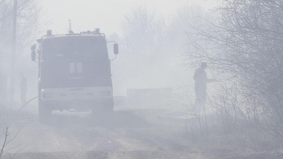Очаги пожаров обнаружили практически во всех районах Воронежской области