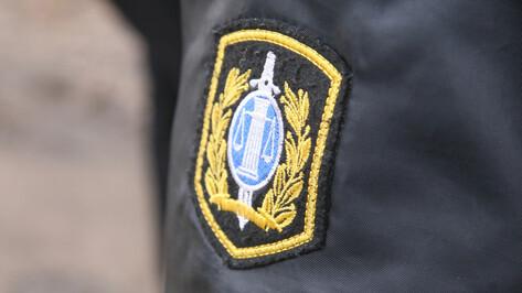 В Воронеже заместителя старшего судебного пристава заподозрили во взятке на 100 тыс рублей