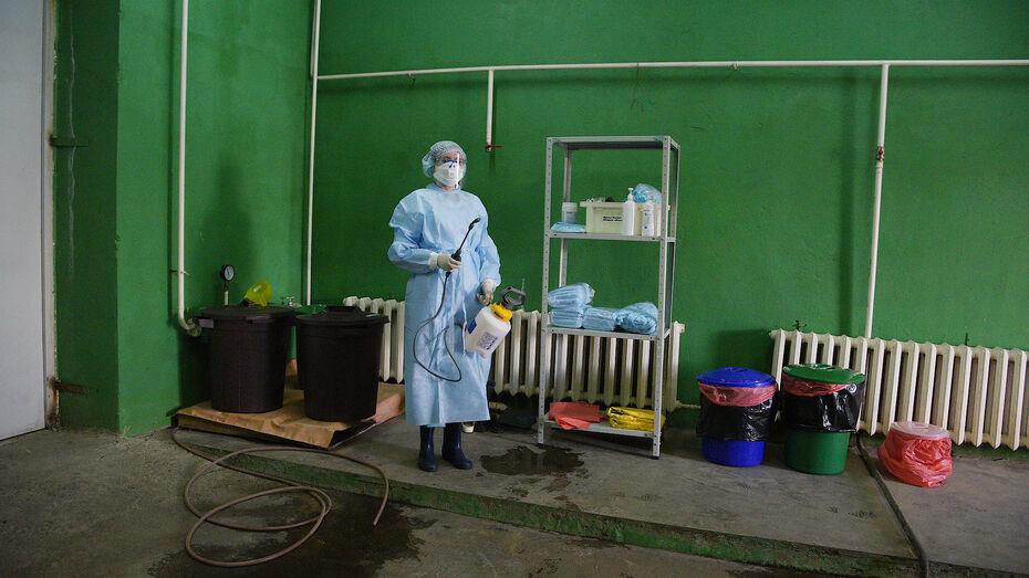 Коронавирус прервал 8-дневную серию антирекордов по заболеваемости в Воронежской области