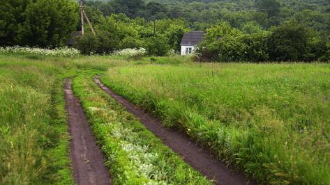 Заброшенные хутора: как пустеют воронежские деревни. Хвощеватый