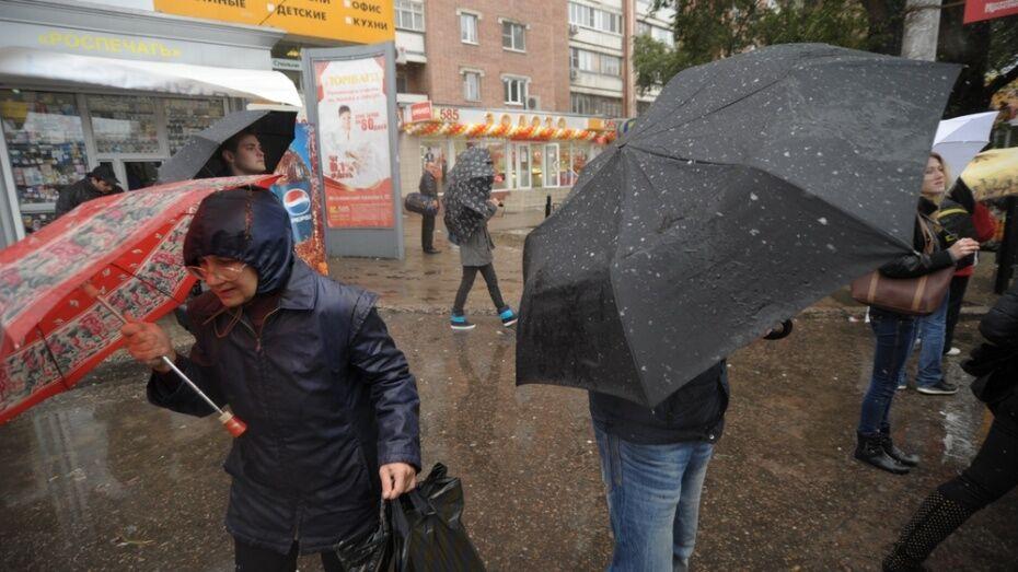 Спасатели вновь предупредили о сильном ветре и дожде в Воронежской области