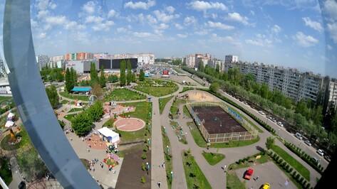 В Воронеже запустили колесо обозрения
