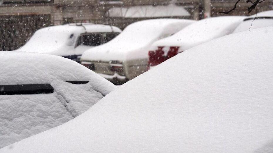 Плотный слой снега накроет Воронежскую область