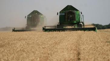 Председатель Воронежской облдумы выступил за право регионов определять аграрную политику