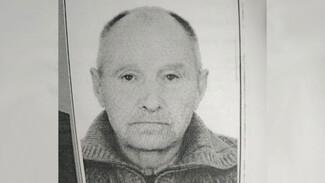 Родственники попросили помощи в поисках пропавшего в Верхнем Мамоне 76-летнего мужчины