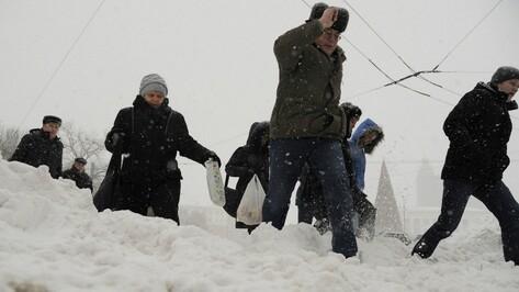 В ночь на 23 января воронежские коммунальщики будут усиленно вывозить снег с улиц