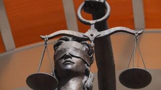Дело воронежского адвоката с «большими связями» передали в суд