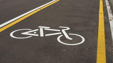 До 9,8 млн рублей потратят на строительство велодорожки «Воронеж-Шилово»
