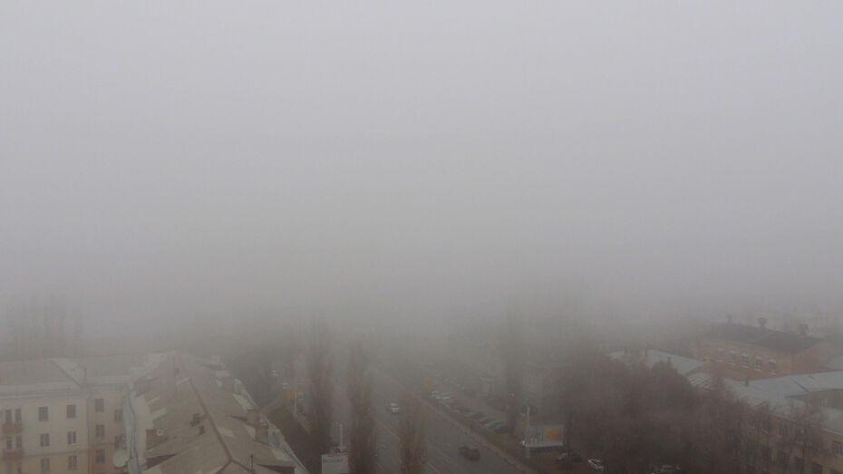 В Воронежской области объявили желтый уровень погодной опасности из-за тумана и снега