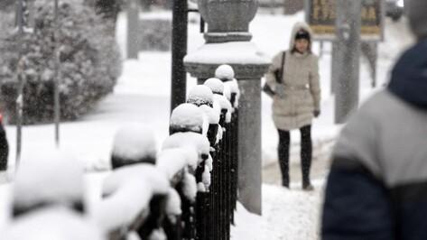 Из Воронежа за ночь вывезли 4,3 тыс кубометров снега