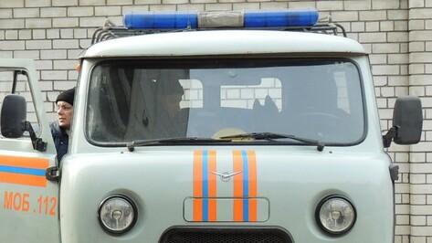 В Воронеже 16-летний подросток пригрозил взорвать дом
