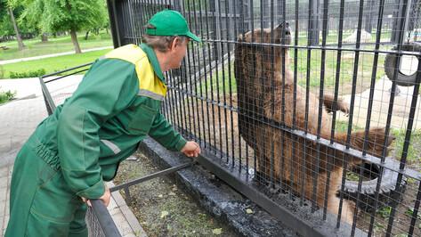 Неравнодушные воронежцы привезли в зоопарк более 5 т кормов для животных