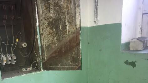 Пожар в воронежском доме объяснили повреждением электрокабеля