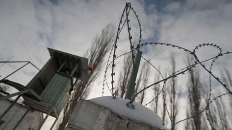 В Воронежской области половина ходатайств об УДО заканчивается освобождением из колонии