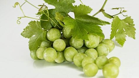 Под Воронежем уничтожили 1 т винограда из Турции