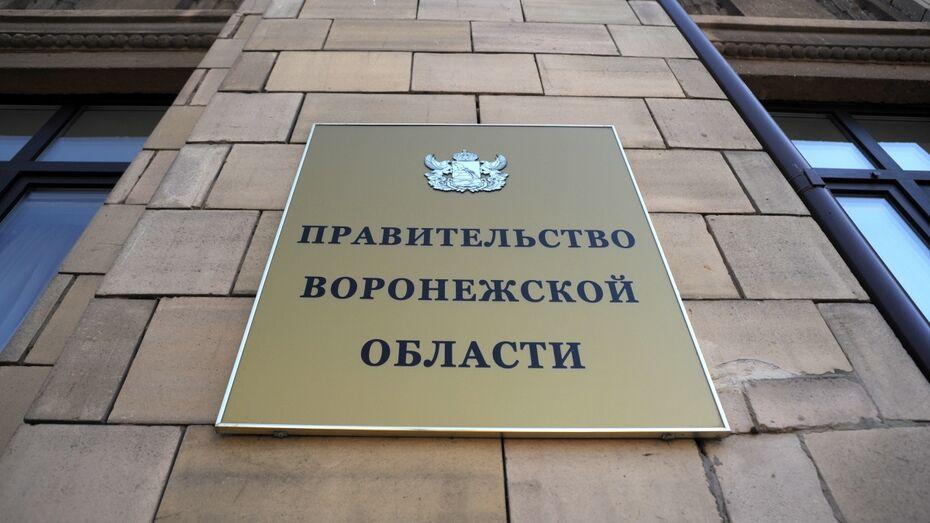 Воронежское облправительство увеличит объем бюджетной поддержки малоимущих