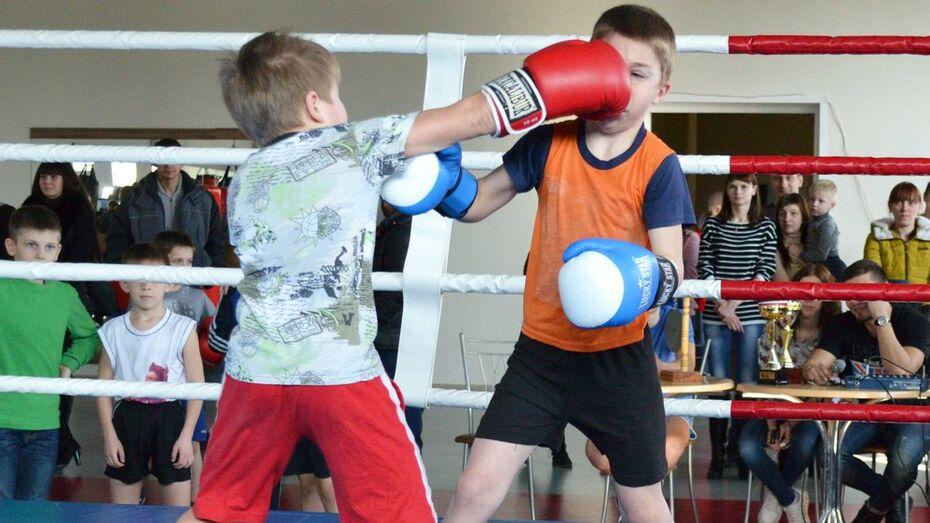 Лискинские боксеры завоевали 13 медалей на областном турнире