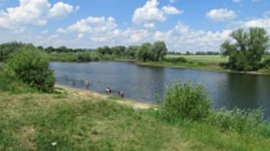 В Нижнедевицком районе мелеет единственный пруд, пригодный для купания