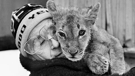 Конец века. Нападение льва на ребенка и тонна колбасы в воронежском лесу