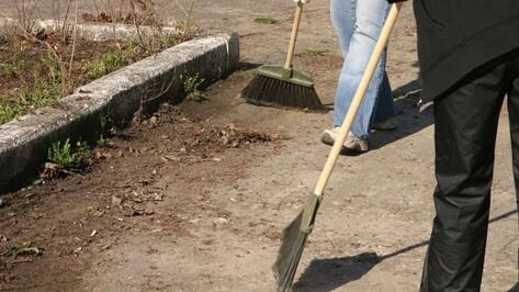«ВелоВоронеж» позвал горожан на уборку обзорной площадки Придаченской дамбы