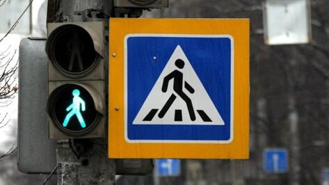 На дорогах Воронежа с начала года поставили 10 новых светофоров