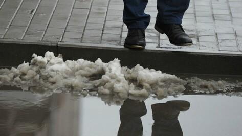 Холод и мокрый снег сохранятся в Воронеже на рабочей неделе