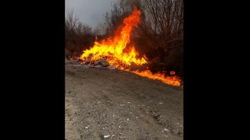 В Воронеже сожгли контрафактных сигарет на 1 млн рублей