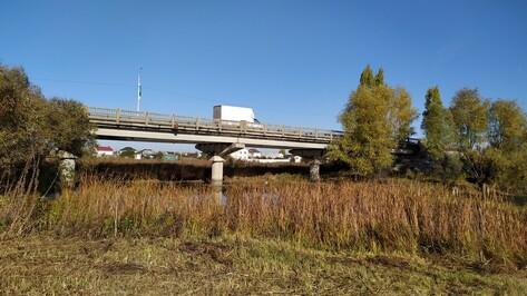 Под Воронежем капитально отремонтируют мост через протоку реки Усмань