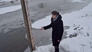 Под Рамонью на реке Воронеж заработал гидрологический пост