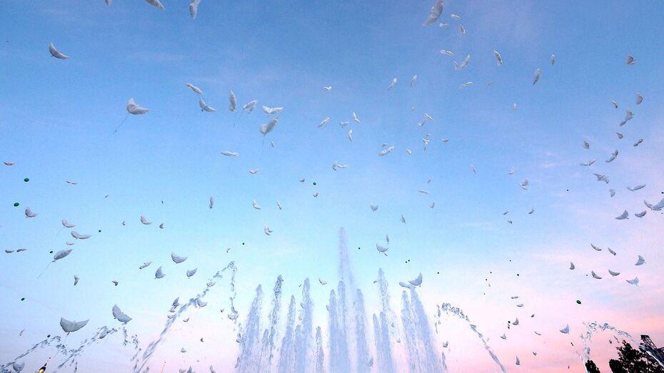 В День ВДВ в Воронеже будут работать фонтаны